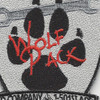 D Company 1-501st ARB Aviation Patch Hook And Loop   Center Detail