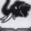 64th Armor Cavalry Regiment Patch | Center Detail