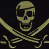 Color Seal OIF OEF One Eye Calico Jack Pirate Patch Acu | Center Detail