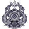 Army Master Diver Badge Patch