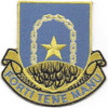 920th Air Base Security Battalion Patch