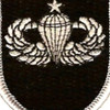 5th Special Forces Group With Senior Jump Wings Patch | Center Detail