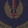 Air Force In Europe Command OD Patch | Center Detail