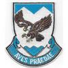 882nd Airborne Engineer Battalion Patch