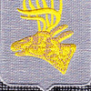 395th Infantry Regiment Patch | Center Detail
