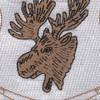 386th Infantry Regiment Patch | Center Detail