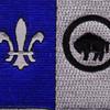 371st Infantry Regiment Patch | Center Detail
