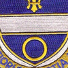 365th Infantry Regiment Patch | Center Detail