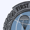 USAF Combat Control Patch