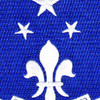 351st Infantry Regiment Patch | Center Detail