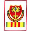 320th Airborne Field Artillery Battalion Patch Vietnam