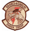 2nd Squadron 6th Aviation Air Cavalry Regiment B Troop Patch Desert
