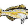 Yellowtail Snapper Patch | Center Detail