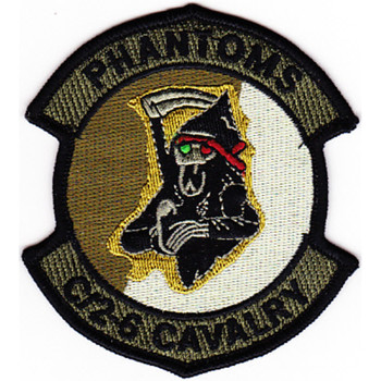 2nd Squadron 6th Aviation Attack Air Cavalry Regiment Company C Patch OD