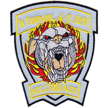 4th Battalion 2nd Aviation Regiment D Company Patch - Version B