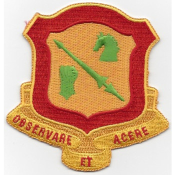 111th Armored Cavalry Regiment Patch