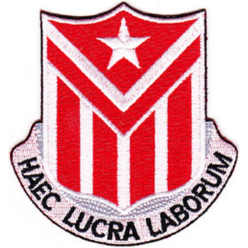 554th Engineer Battalion Patch