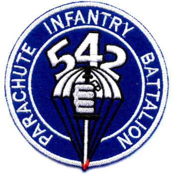 542nd Parachute Infantry Battalion Patch