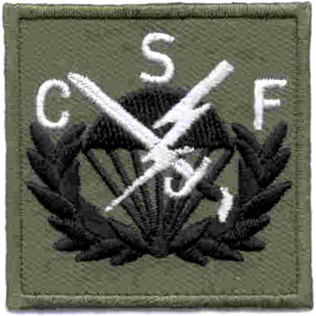506th Airborne Infantry Regiment Patch CSF