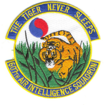 607th Air Intelligence Squadron Patch