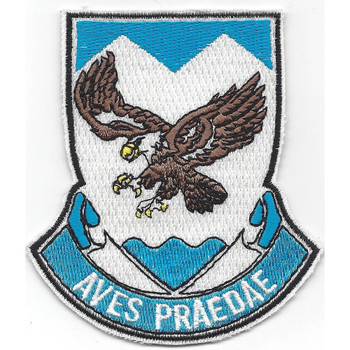 882nd Airborne Engineer Battalion Patch