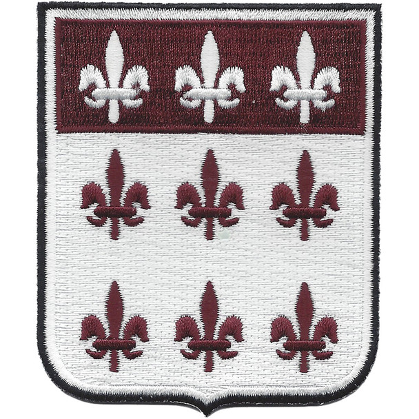 307th Airborne Medical Battalion Patch