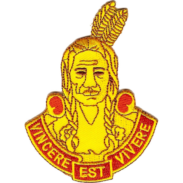 101st Field Artillery Regiment Patch