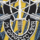 12th Special Forces Group Flash W/Crest Patch | Center Detail