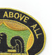 228th Military Police Battalion Patch   Upper Right Quadrant