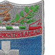 172nd Infantry Regiment Patch | Upper Right Quadrant