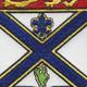 169th Infantry Regiment Patch | Center Detail