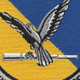 15th Recon Drone Squadron Patch | Center Detail