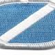 151st Ranger Battalion Flash Oval | Center Detail