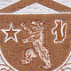 136th Infantry Regiment Patch - Desert | Center Detail