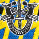 12th Special Forces Group With Crest Flash Patch | Center Detail