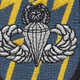 12th Special Forces Group Airborne MPB Flash Patch | Center Detail
