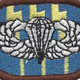 12th Special Forces Group Airborne BPB Oval Patch | Center Detail