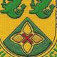 185th Armor Cavalry Regiment Patch | Center Detail