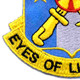 125th Military Intelligence Battalion Patch | Lower Left Quadrant