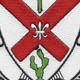 124th Infantry Regiment Patch | Center Detail