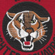 120th Fighter Squadron Patch | Center Detail