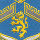 106th Infantry Regiment Patch | Center Detail