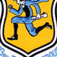 103rd Fighter Group Patch | Center Detail