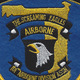 101st Airborne Infantry Division Association Patch Florida Gulf Coast Chapter   Center Detail