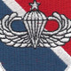 11th Special Forces Group Flash With Senior Jump Wings Patch   Center Detail
