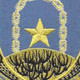 920th Air Base Security Battalion Patch | Center Detail