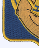 34th Armored Cavalry Regiment Patch