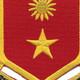 311th Cavalry Regiment Patch | Center Detail