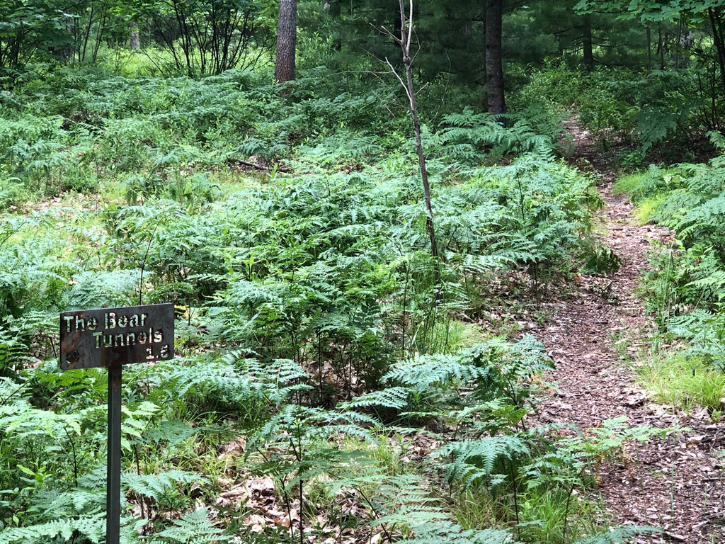 MTB Trail Sign for marking Strava Segment Start