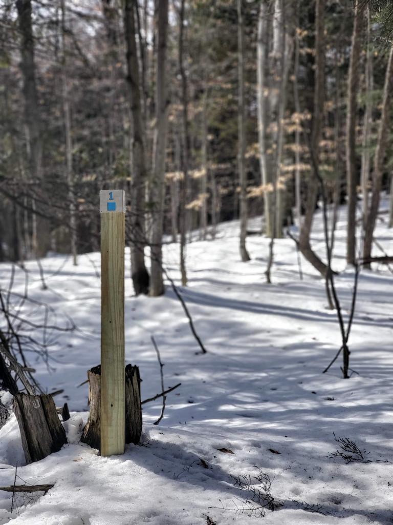 Trail Post Marker